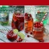 Cranberry Ginger Cocktail & Quick Cranberry Holiday Mocktail Recipes