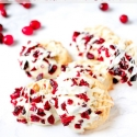 Cranberry White Chocolate Macadamia Nut Cookies
