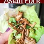 Instant Pot Asian Pork