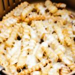 Air Fryer Cheese Fries (2 ingredients)