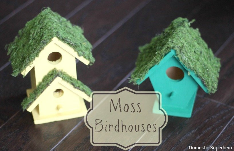 Bird House 31