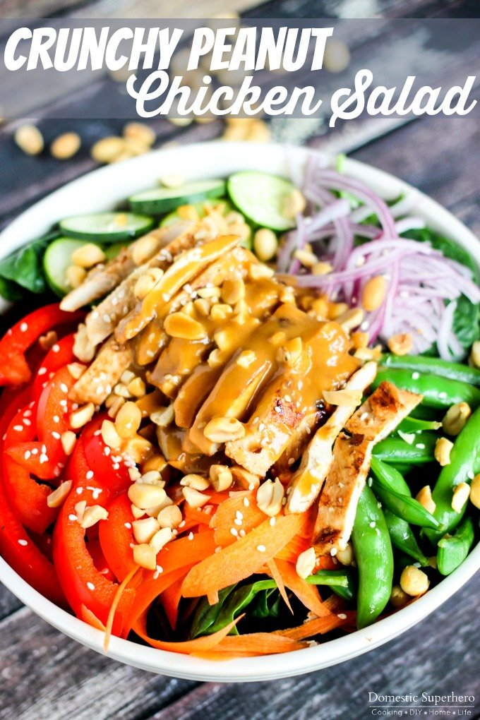 Crunchy Peanut Chicken Salad (4)