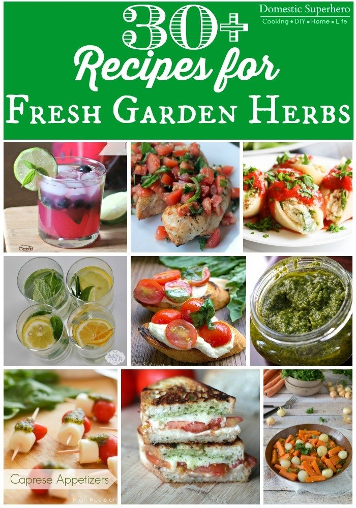 30+ Recipes for Fresh Garden Herbs - drinks, desserts, main dishes, and sides! Something for all those yummy garden herbs!