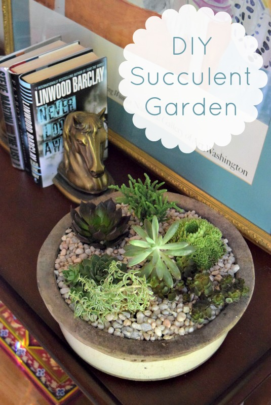 miss_information_succulent_garden_how_to
