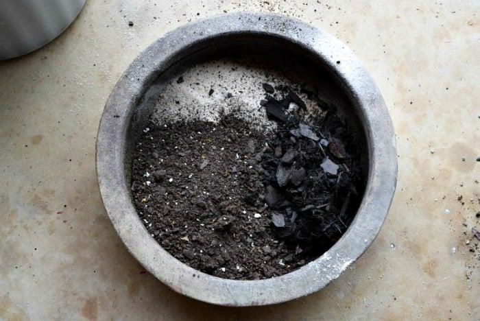 soil_mix_succulent_garden_miss_information
