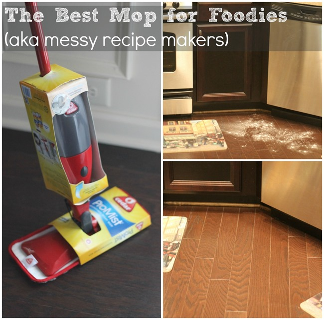 The Best Mop for Foodies