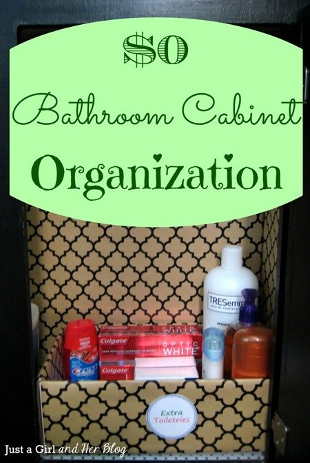 Organization Ideas - Bathroom Cabinet
