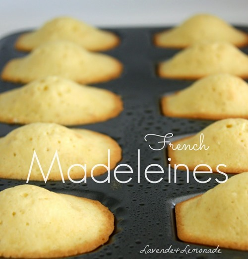 French Madeleines Title v2