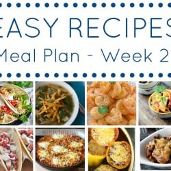 Meal Plan week 21 - square